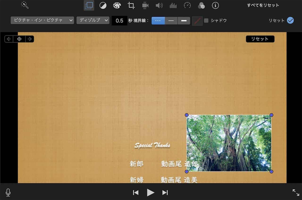 プレビュー画面上の左端のボタンをタップし、プルダウンから「ピクチャ・イン・ピクチャ」を選択
